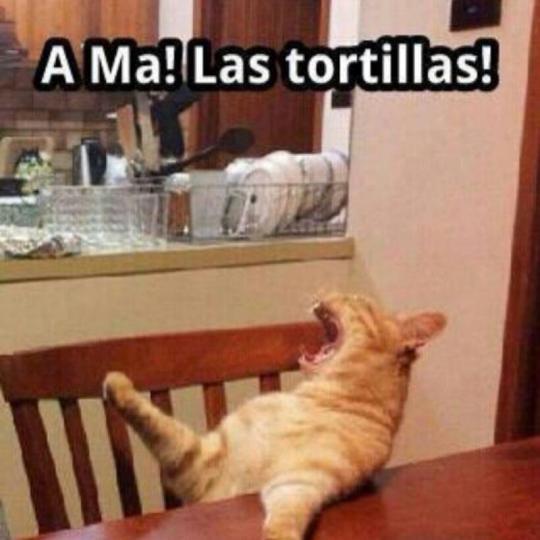 ama las tortillas