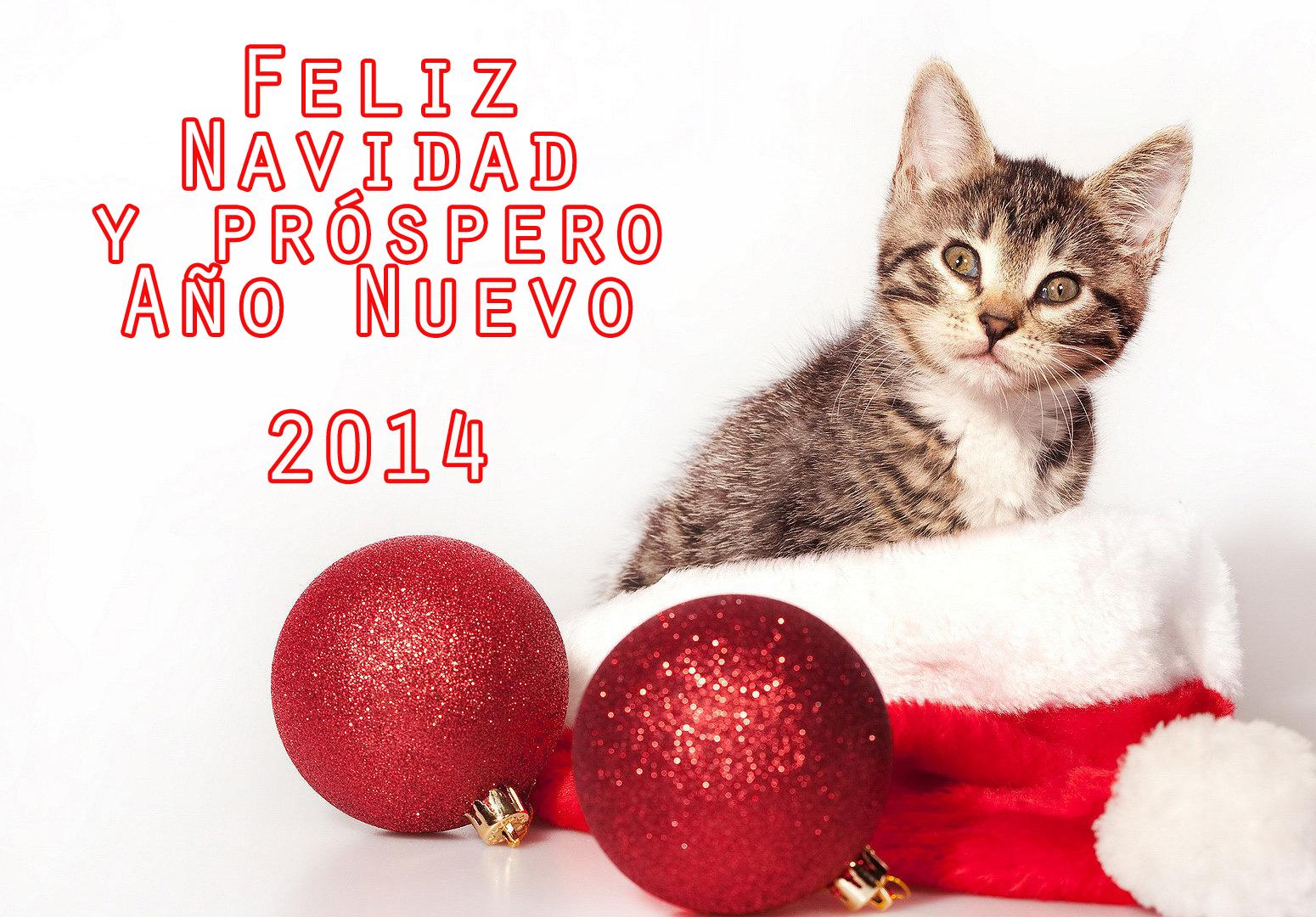 año nuevo 14